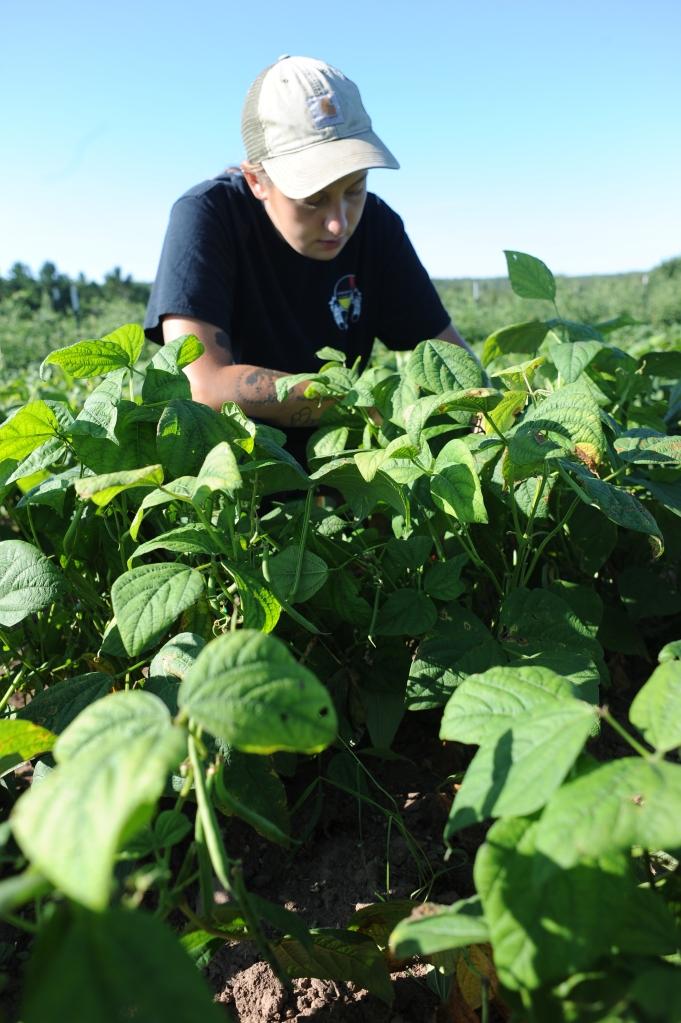 megan-picking-beans